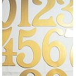 "HA3293 Magnetic House Numbers 5"" Brass"
